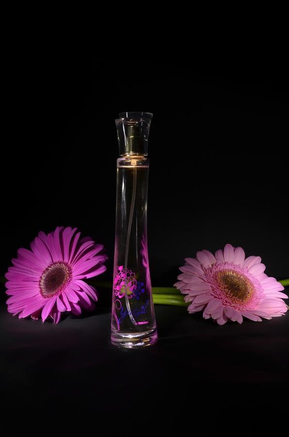 Na jakich warunkach można pozyskać markowe perfumy damskie?
